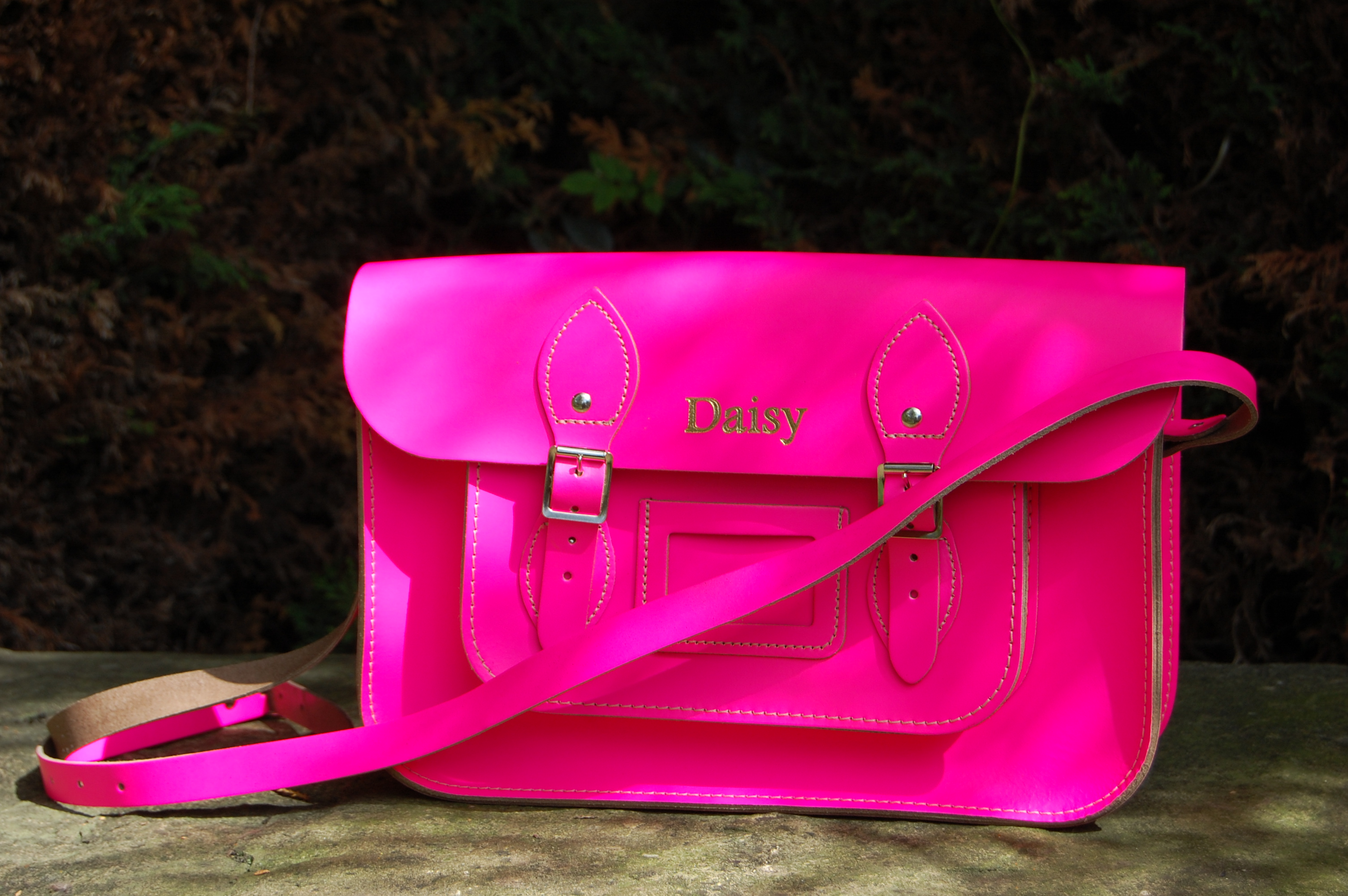 the-daisy-satchel